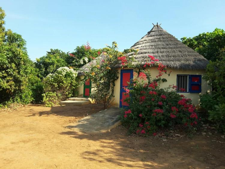 Huts/Rooms for rent